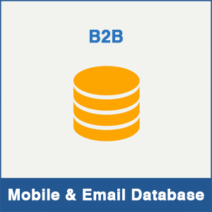 B2B Database Provider In India - Mobile Number & Email Database